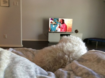 Friend's Dog + Netflix Therapy