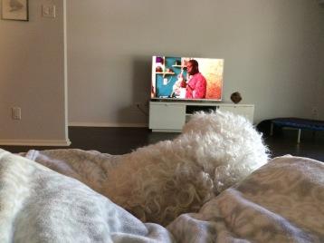 Friend's Dog + Netflix Therapy